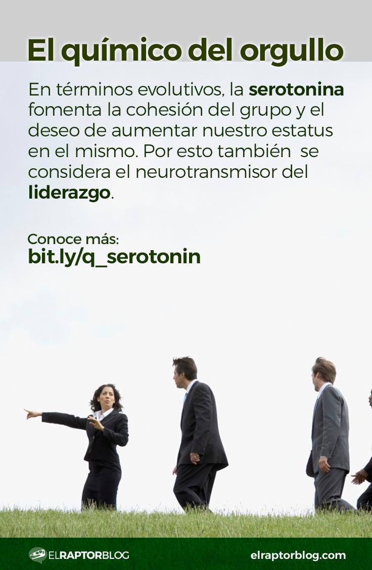 La serotonina y el liderazgo