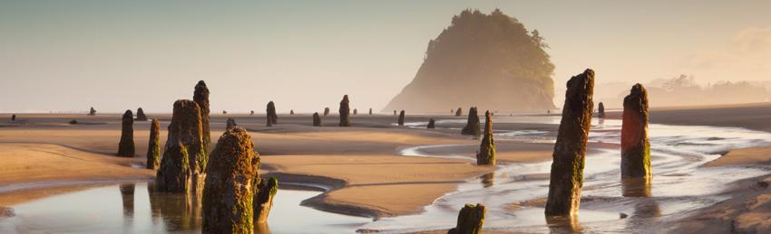 Playa Neskowin,Oregon