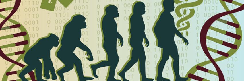 Evolución y Salud